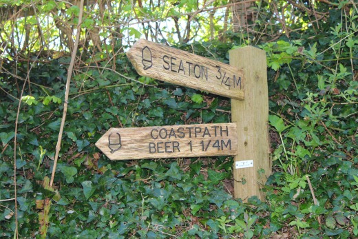 Coast path walk to Beer sign post
