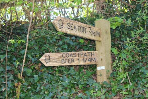 Coast path walk to Beer sign post