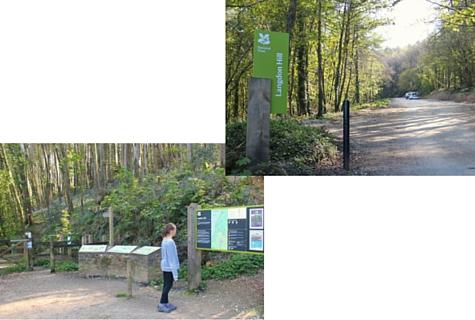 The Easy Way to Walk to Golden Cap Jurassic Coast Dorset Langdon Woods