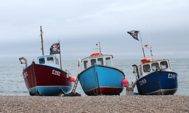 Fishing Trip To Beer in East Devon