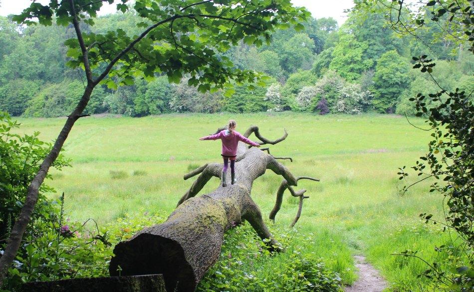 Flip Flops or Wellies Wayford Woods