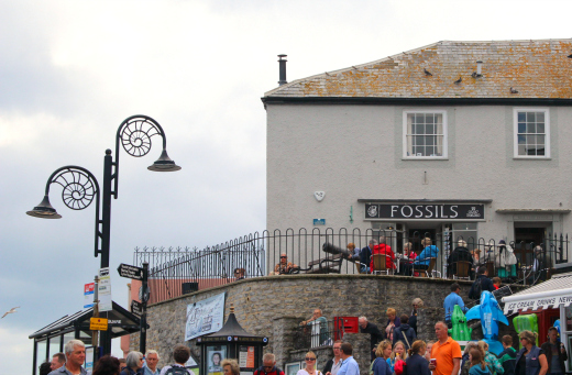 Events in Lyme Regis fossil shop view
