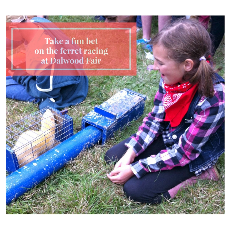 Summer Fair Dalwood Village ferret racing