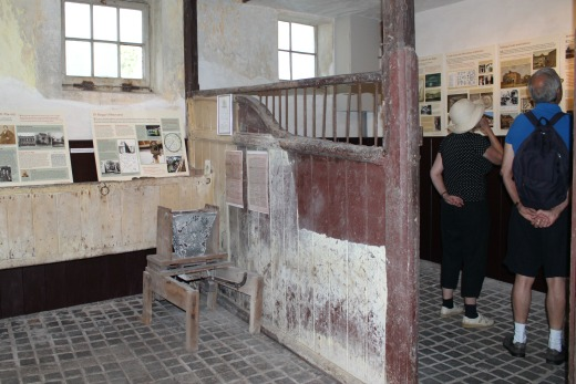 belmont-house-lyme-regis-stables