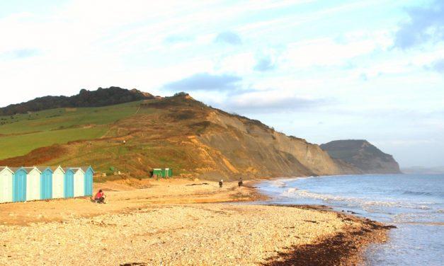 Winter Beach Walks with Dogs in Devon & Dorset on the Jurassic Coast