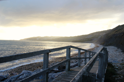 Winter Beach Walks Dogs in Devon Dorset Jurassic Coast -Charmouth-west-beach
