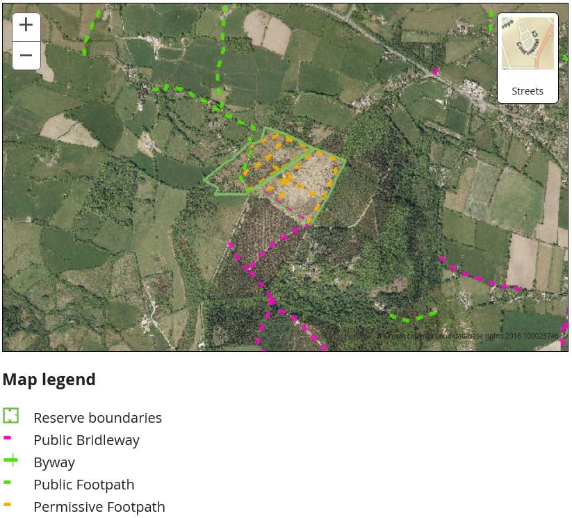 Trinity Hill aerial map