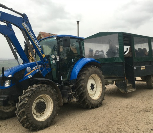 river-cottage-cookery-course-day-weekend-event-christmas-review-tractor-taxi