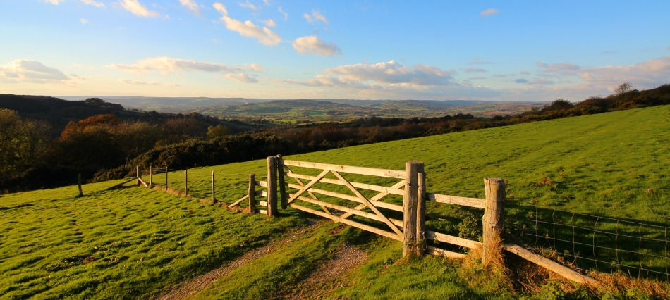 River Cottage cookery course day event review View