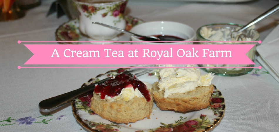A Cream Tea at Royal Oak Farm near Honiton