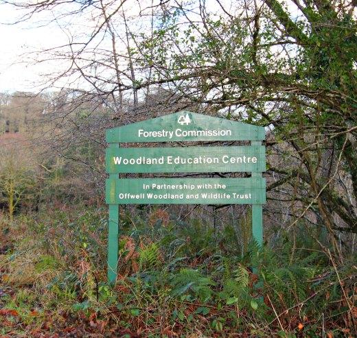 Woodland Countryside Walks East Devon Offwell Woods Woodland Trust