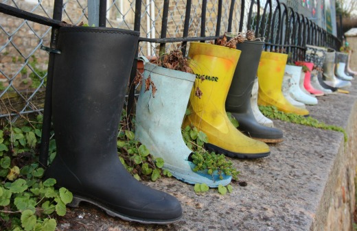 Woodland Countryside Walks East Devon Offwell Woods welly planters