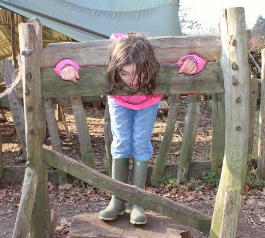 Wildwood Escot Family Day Out Devon stocks