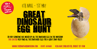 What's On Easter Dorset Dinosaur Museum Easter