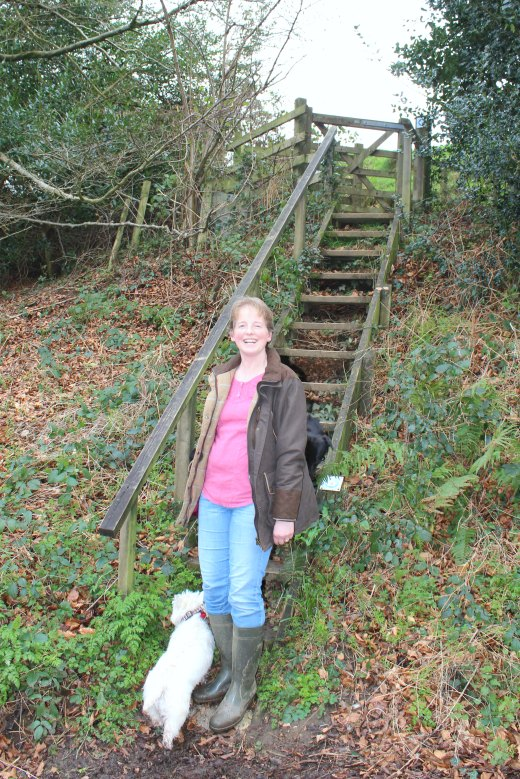 Roundball Wood Honiton East Devon Family Dog Friendly Walk