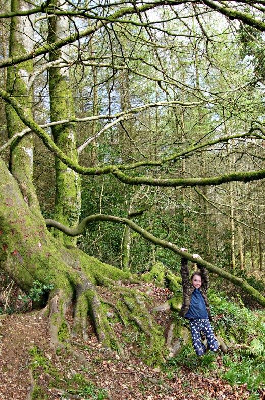 Otterhead Lakes tree climbing