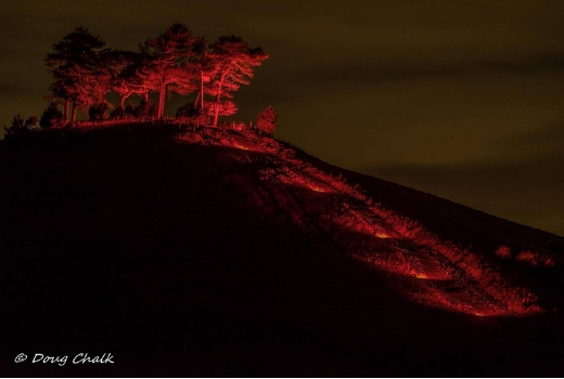 Colmer's Hill Poppies at night