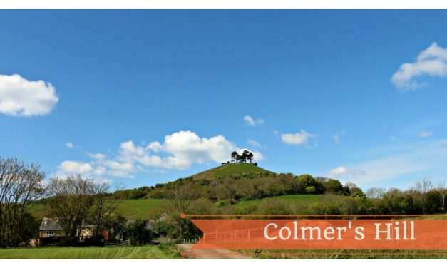 A Lovely Walk Up The Iconic Colmer's Hill near Bridport