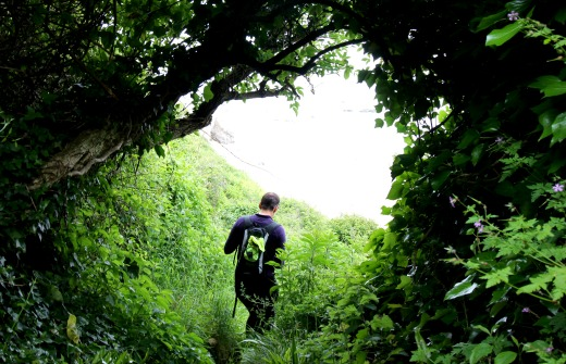 South West Coast Path Beer to Branscombe Hooken Undercliff path