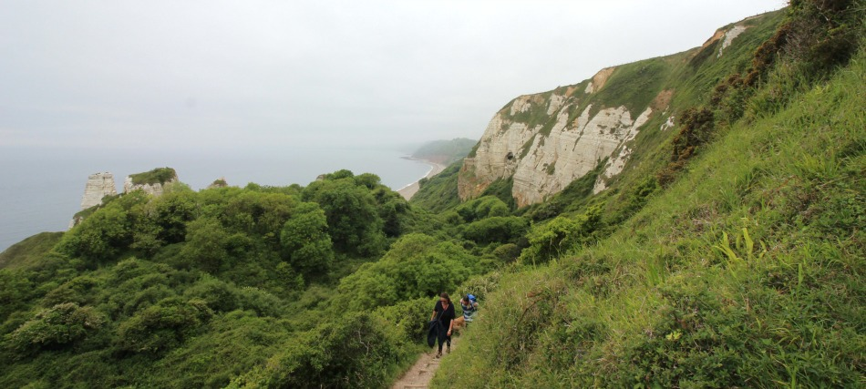 South West Coast Path Beer to Branscombe Walk Hooken Undercliff view