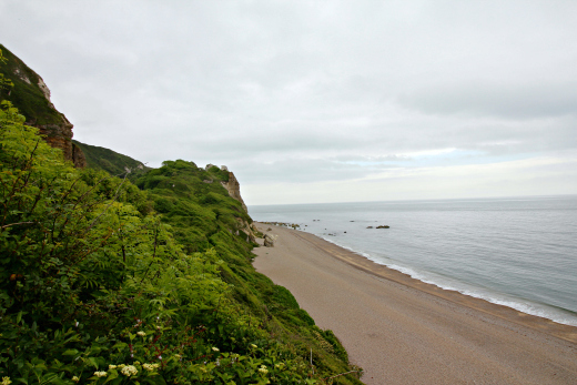 South West Coast Path Beer to Branscombe beach