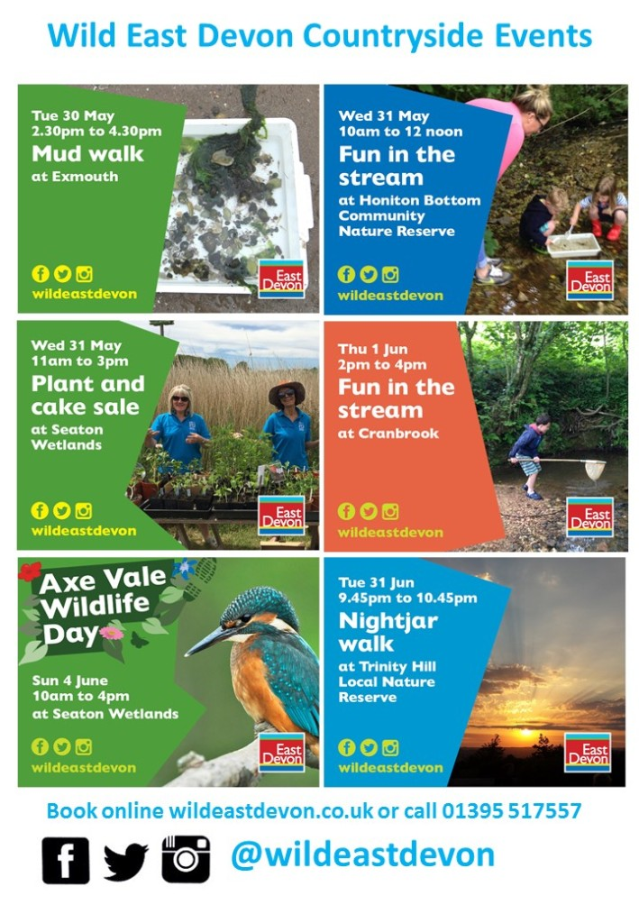 Whats-On-Events-May-Half-Term-2017-Devon-Dorset-Somerset-Wild-East-Devon-Poster