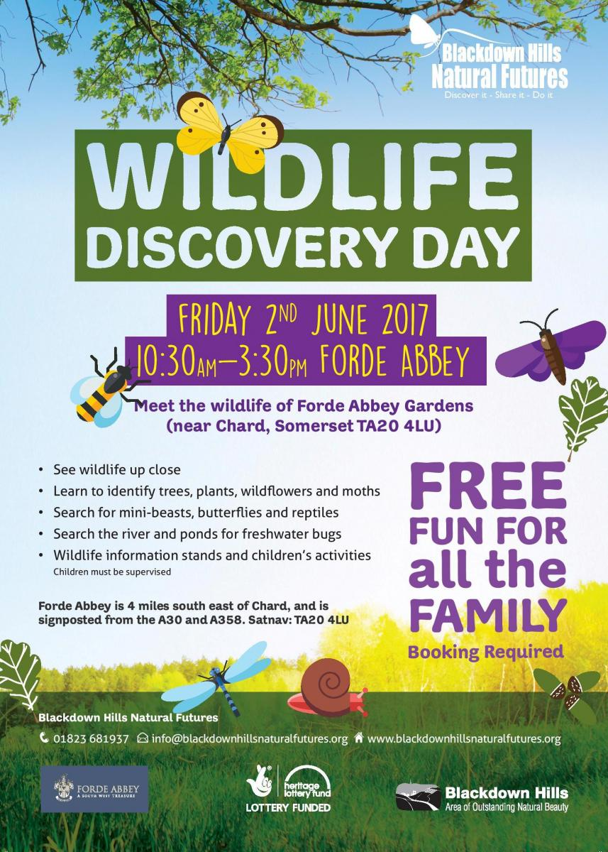 What's On Events May Half Term 2017 Devon Dorset Somerset Wildlife discovery day_2017