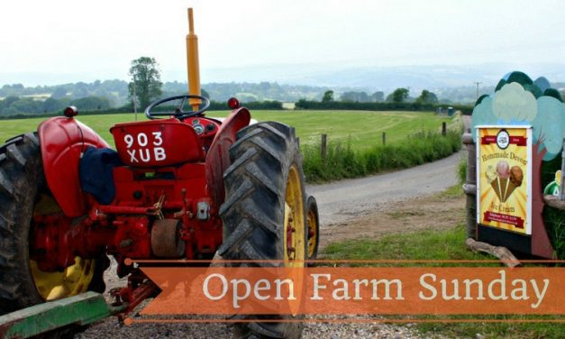 Visit a Farm – Open Farm Sunday – A Great Chance to Learn About Farming