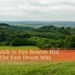 Enjoy a Walk to Fire Beacon Hill on the East Devon Way