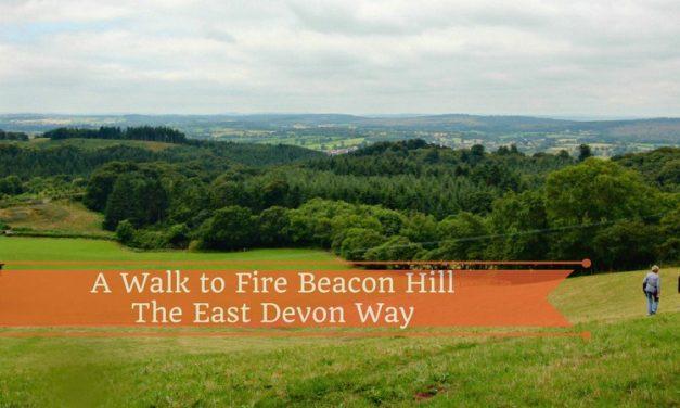 Enjoy a Walk to Fire Beacon Hill on the East Devon Way