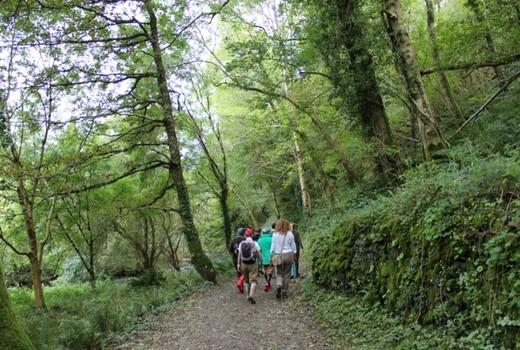 Heddon Valley North Devon Accesible Short Walk