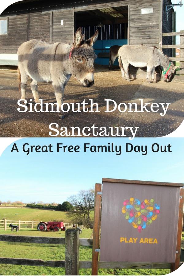 Sidmouth Donkey Sanctuary Pinterest Pin