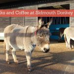 Walks Around Sidmouth Donkey Sanctuary