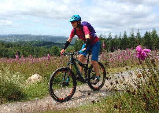 beginner's guide and tips for mountain biking Bike Guide Devon