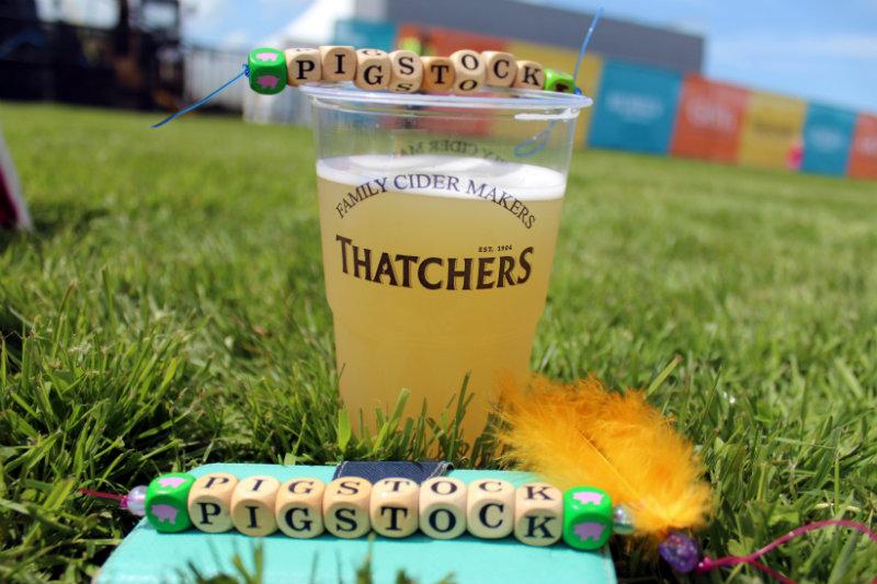 Great Devon Music Festivals - Pigstock thatchers