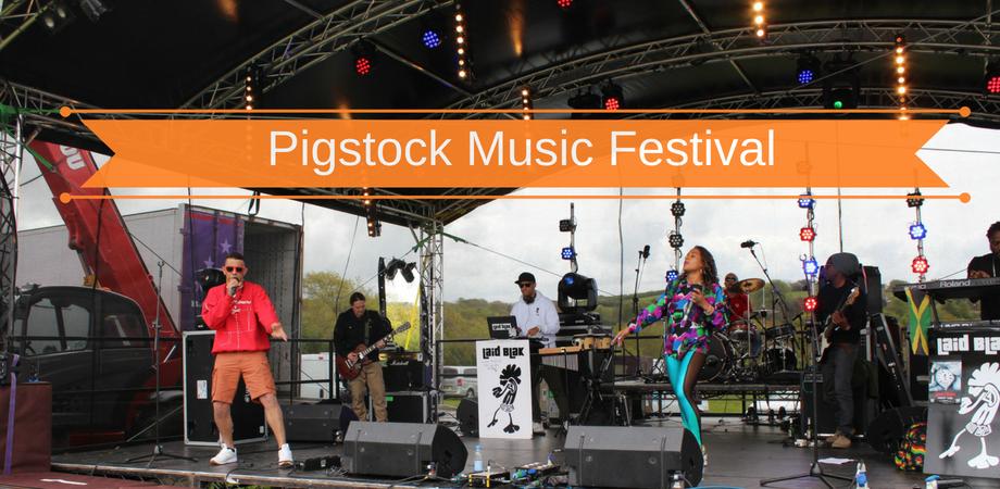 Great Devon Music Festivals – Pigstock