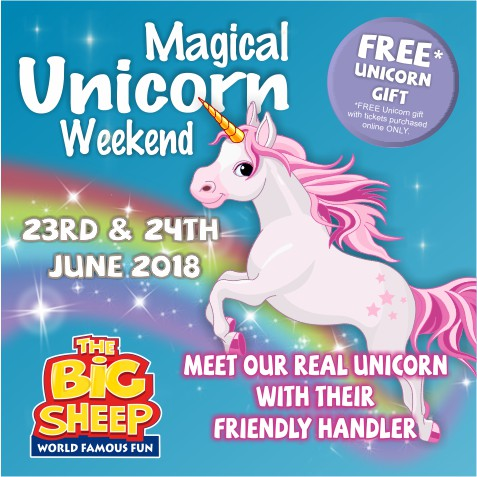Unicorn Weekend at the Big Sheep