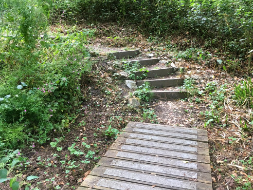 A short walk in Lyme Regis steps to Chimney Rock