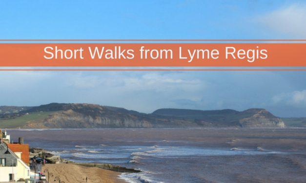 Short Walks in Lyme Regis