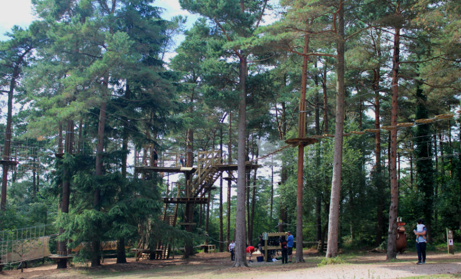 Active Day Out Go Ape Junior course Exeter