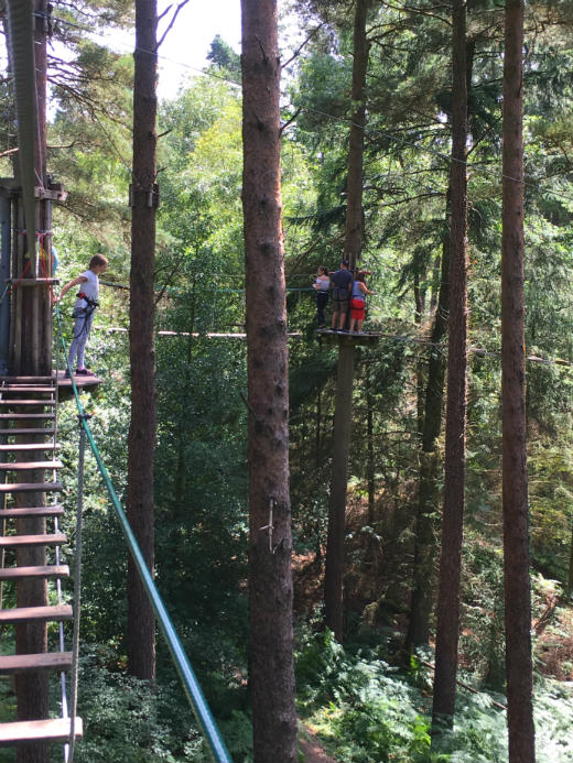 Active Day Out in Devon Go Ape high ropes looking down