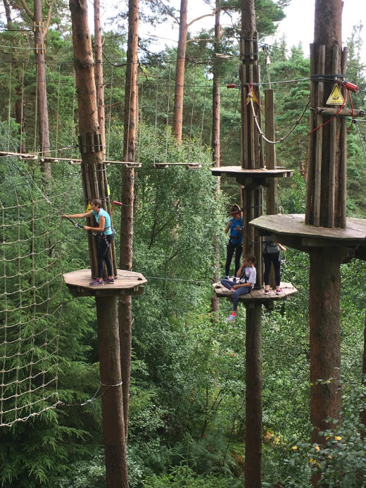 Active Day Out Go Ape high ropes