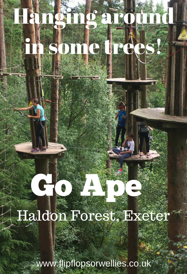 Go Ape Haldon Hill pinterest save for later
