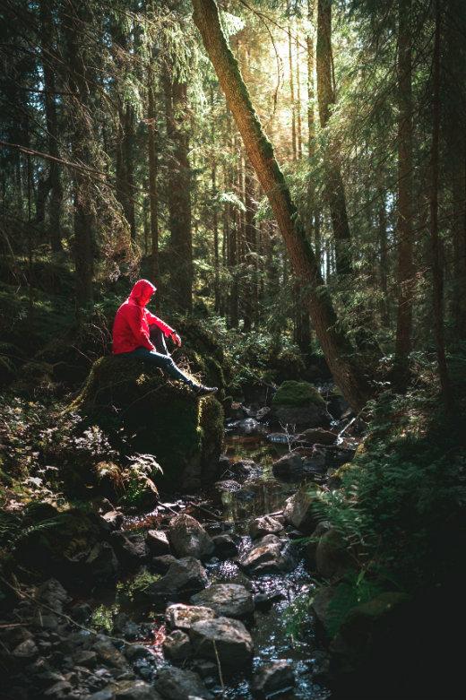 Walking Gear Equipment List walker in the woods