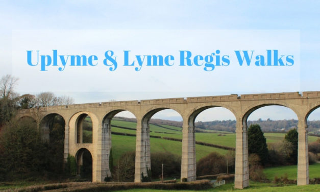 Lyme Regis and Uplyme Circular Walks –  Exploring Cannington Viaduct