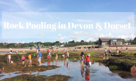 Best Rock Pooling in Devon and Dorset