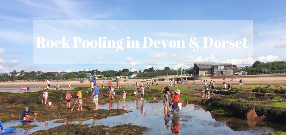 Best Rock Pooling in Devon and Dorset
