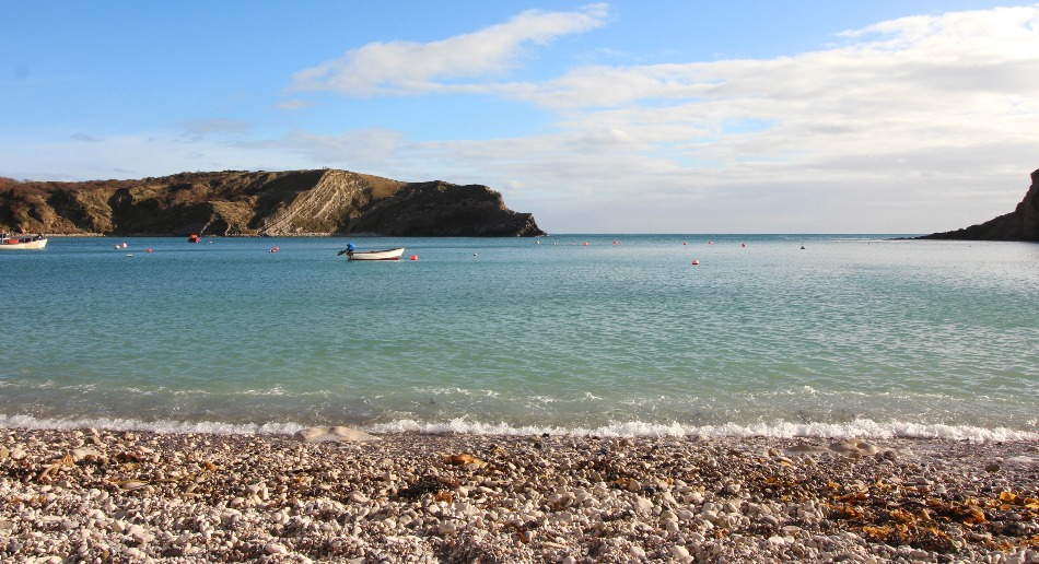 Best Rock pooling in Devon and Dorset Lulworth Cove