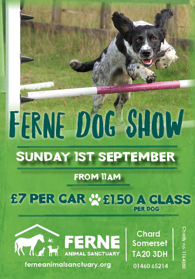 Ferne Dog Show poster