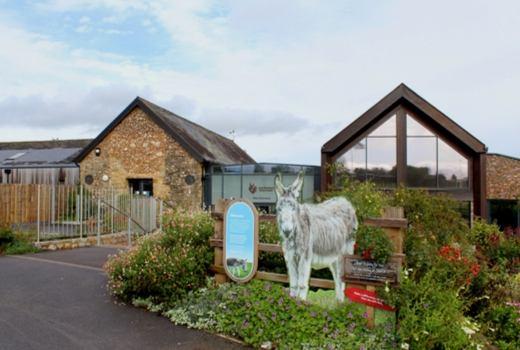 Sunday Brunch Sidmouth Donkey Sanctuary